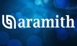 Поступление на склад: продукция Aramith