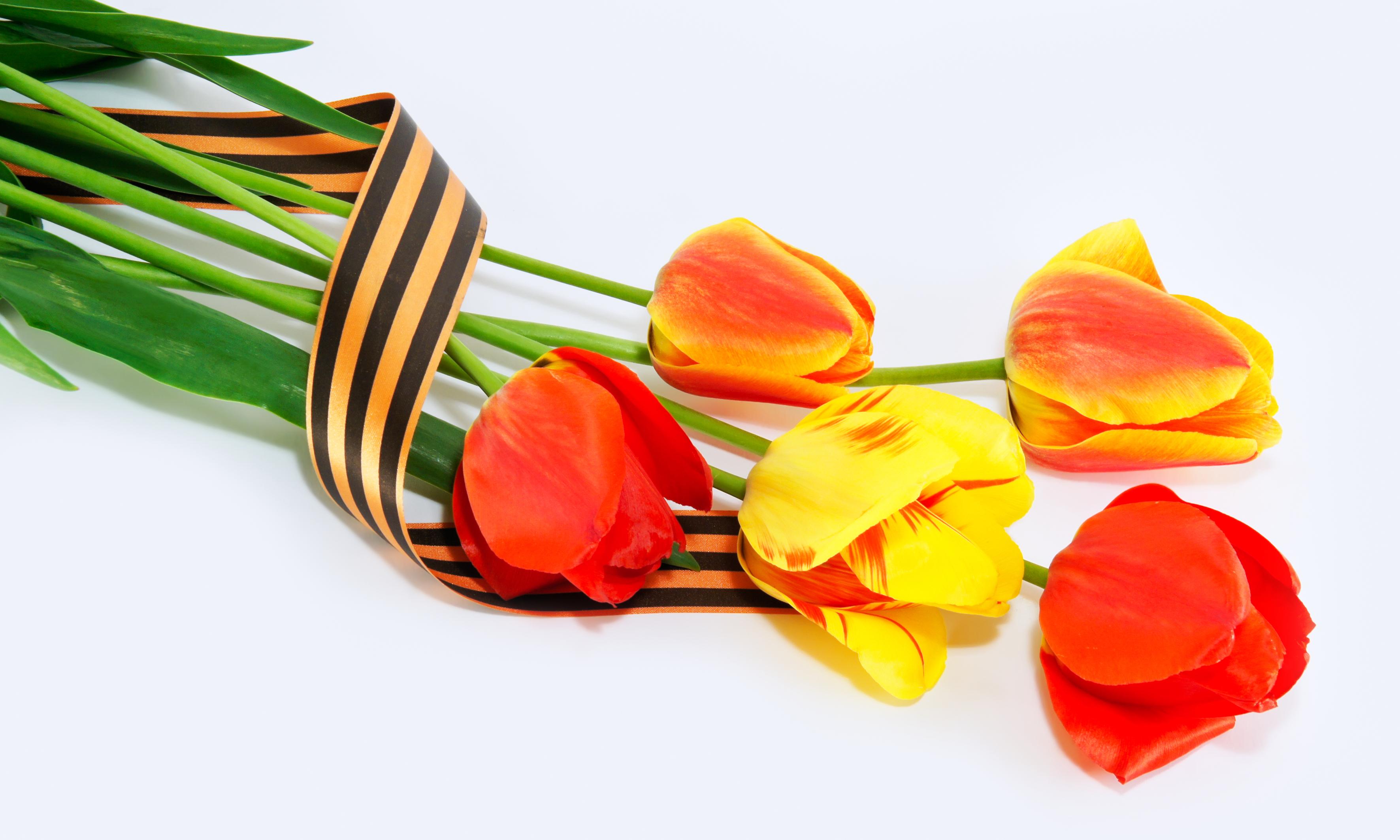 Рождение, открытка цветы с георгиевской лентой